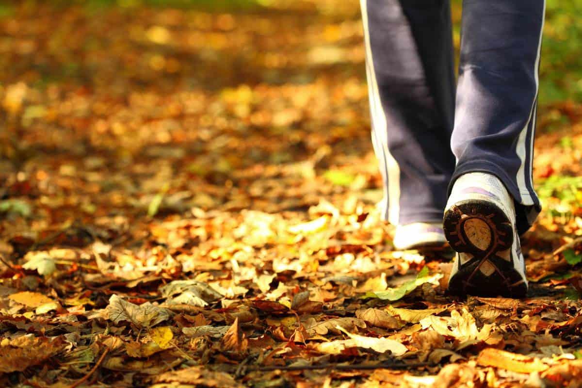Gåtur på høsten - Kropp og Helseklinikken